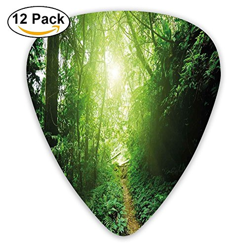 Newfood Ss A Way In The Jungle Of Malaysia Rainforest Fresh Grass Trees Rural Morning Scenery Guitar Picks 12/Pack Set ()