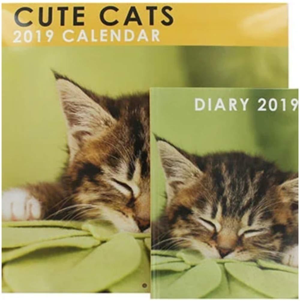 Juego de calendario y agenda para 2019 con diseño de gatos: Amazon ...