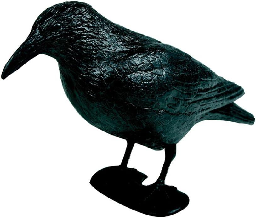 Siena Garden 551983 - Cuervo de plástico para espantar palomas, color negro
