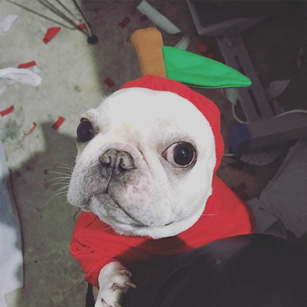 Disfraz de Navidad para perro pequeño mediano o gato, traje ...