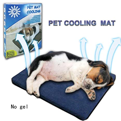 Amazon Com Petdream Anti Biting Pet Cooling Pad Dog Water
