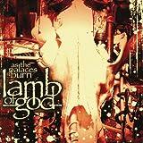 As the Palaces Burn - Lamb of God