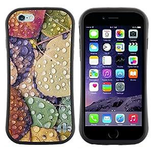 "Hypernova Slim Fit Dual Barniz Protector Caso Case Funda Para Apple (5.5 inches!!!) iPhone 6 Plus / 6S Plus ( 5.5 ) [Deja caer la lluvia de otoño Gotas de rocío Naturaleza""]"