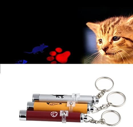 Juguete para gato o perro, puntero LED rojo. Motivo de pata de gatito: Amazon.es: Productos para mascotas