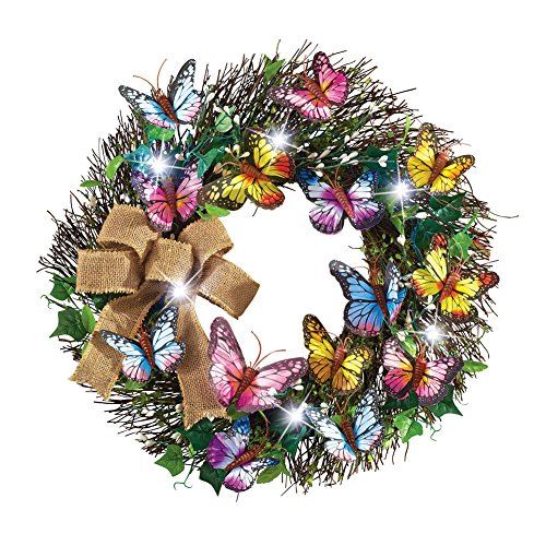 Collections Etc LED Lighted Butterfly -
