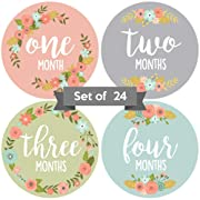 Baby Monthly Stickers | Floral Baby Milestone Stickers | Newborn Girl Stickers | Month Stickers for Baby Girl | Baby Girl Stickers | Newborn Monthly Milestone Stickers (Set of 24)