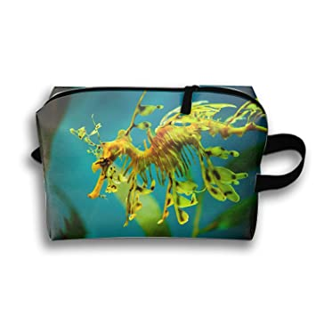 891194a9029d Amazon.com   Leafy Sea Dragon Waterproof Nylon Organizer for Travel  Accessories   Beauty