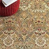 Safavieh Persian Legend Collection PL819B Handmade