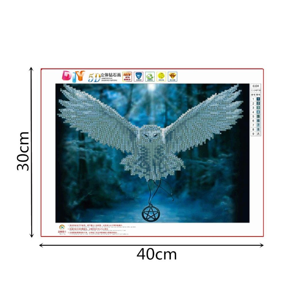 H 5D Diamond Painting,Lavany 5D DIY Diamond Painting By Number Kits Owl Snowman Rhinestone Pasted Embroidery Home Decor,Cross Stitch Stamped Kits
