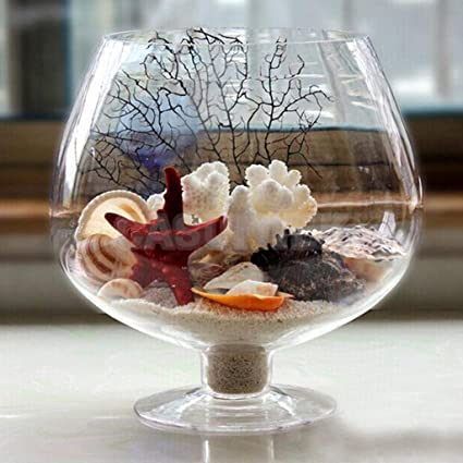 ABG Flower Plant Glass Vase Terrarium Wine Glass Decor. BIGGEST SIZE. WITH COLORFUL GLASS STONES
