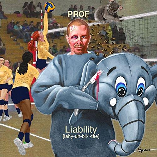 Liability [Explicit]