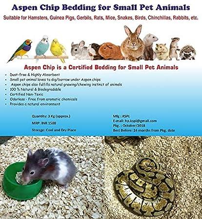 3Kg (When PKD) Aspen Chip Bedding for Hamster, Guinea Pig, Rabbit, Gerbil,  Rat, Mouse, Python, Snake, Bird, Chinchilla, etc  Dust Free Bedding