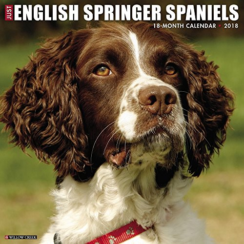 English Springer Spaniels 2018 Wall Calendar
