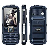 Cectdigi T9900 Rugged 2G GSM Mobile Phone,Shockproof Military-Designed phone with Power Bank Charging Function,15800mAh,2.8inch Display,Dual SIM Cards,Flashlight Equipped,Voice Broadcast (Blue)