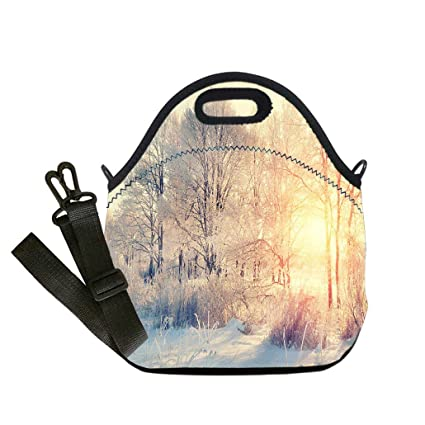 9ff989a24df1 Amazon.com: Lunch Box Insulation Lunch Bag Large Cooling Tote Bag ...