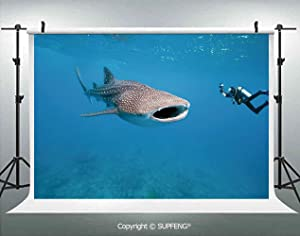 Photo Backdrop Giant Whale Shark and Underwater Photographer in Wildlife Diving Image 3D Backdrops for Interior Decoration Photo Studio Props