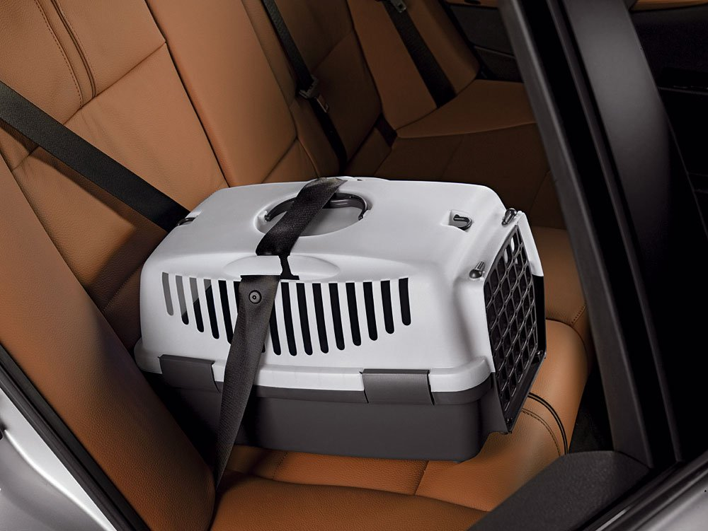 Das Bild zeigt eine Katzentransportbox, die auf der Rückbank eines Fahrzeugs mittels 3-Punkt-Gut gesichert ist.