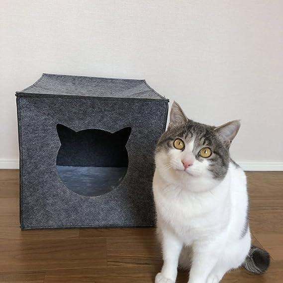 Cueva para gatos nido plegable para gatos cama de gato casa para mascotas: Amazon.es: Productos para mascotas
