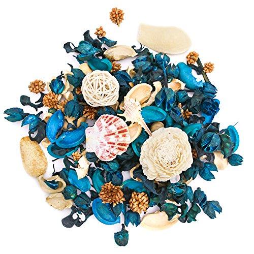 DomeStar Sea Shell Potpourri Bag, Fresh Ocean Scent Sea Shell Conch and Rattan Ball Sachets Decorative Spring Fragrance Bowl Filler and Vase Filler by DomeStar