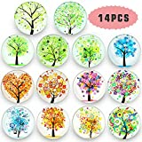 Refrigerator Magnets-Fridge Magnets-Office Magnets-14Pack Beautiful Glass Refrigerator Magnets-Upgraded Refrigerator Magnets Set,Used For Decorative Photo Abstract.{Tree Of Life Series}
