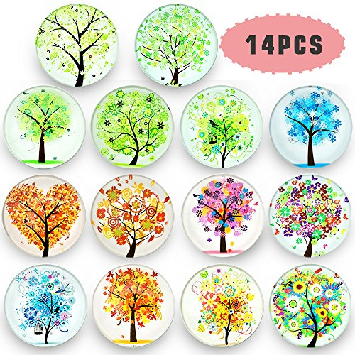Refrigerator Magnets-Fridge Magnets-Office Magnets-14Pack Beautiful Glass Refrigerator Magnets-Upgraded Refrigerator Magnets Set,Used For Decorative Photo Abstract.{Tree Of Life Series} by Ktdorns