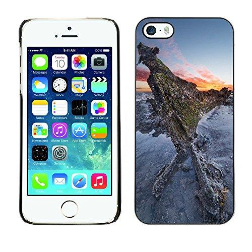 Hülle Case Schutzhülle Cover Premium Case // F00003345 draussen // Apple iPhone 5 5S 5G