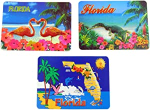Florida Souvenir Magnet Set Embossed Design Fridge Decor, 3 1/2 Inch