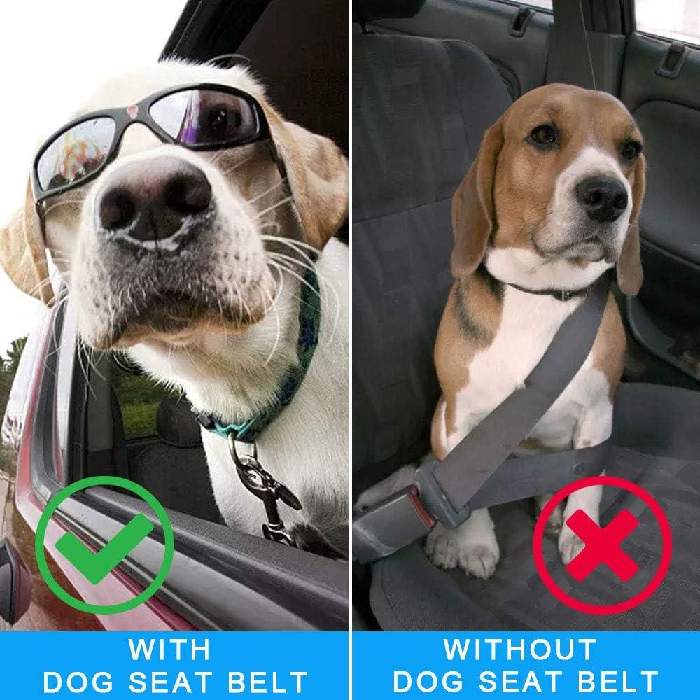 f/ür Kleine Mittlerer Dog Seat Belt Verstellbare L/änge Hund Sicherheitsgurt mit Ruckd/ämpfer Gro/ße Hund Hundegurt f/ürs Auto Hundesicherheitsgurt Auto Anschnallgurt Hund Autogurt Hunde