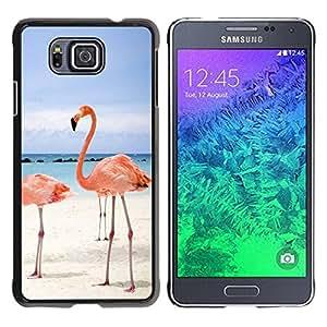 Caucho caso de Shell duro de la cubierta de accesorios de protección BY RAYDREAMMM - Samsung GALAXY ALPHA G850 - Pink Beach Flamingo