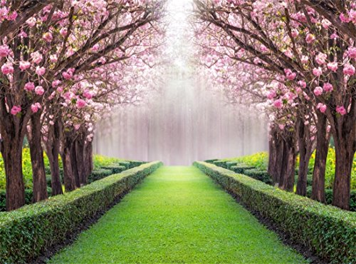 Leowefowa Vinyl 10X8FT Spring Backdrop Valentine's Day Cherry Blossom Green Grass Meadow Plants Countyard Nature Outdoor Wedding Photography Background Girls Lover Photo Studio -