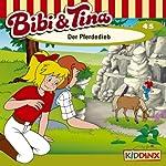 Der Pferdedieb (Bibi und Tina 45)   Ulf Tiehm