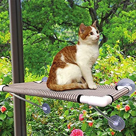 Amazing Cat Perch Cat Window Perch Window Cat Perch Hammock Cat Window Hammock Bed Cat Window Seat Kitty Window Sunny Seat Durable Big Pet Perch With Upgraded Andrewgaddart Wooden Chair Designs For Living Room Andrewgaddartcom