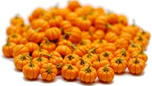 20 Psc ฺFake Fruit Artificial Mini Pumpkins Halloween 1.0 cm Dollhouse Miniatures Food Kitchen by Cool Price