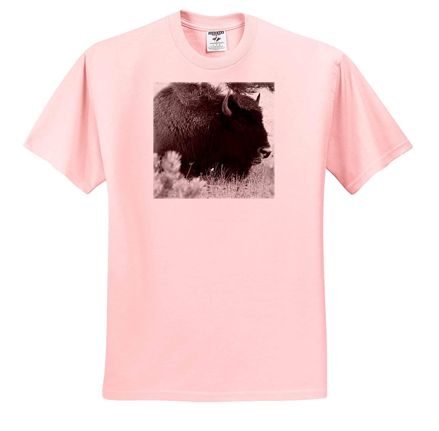 A Bison Sitting on The Ground Done in Black and White Black and White Byson T-Shirts 3dRose Jos Fauxtographee