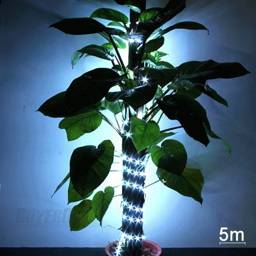 Price comparison product image Ecloud ShopUS 2x 5M 10M 5050 SMD 300 RGB LED Strip Light 12V Home Decor + Remote + Controller