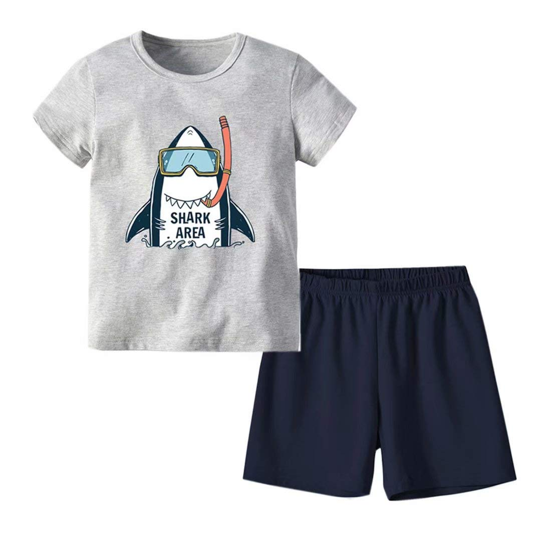 Little Boys Summer Clothes Set Cotton Short Sleeve Tee and Shorts Outfits