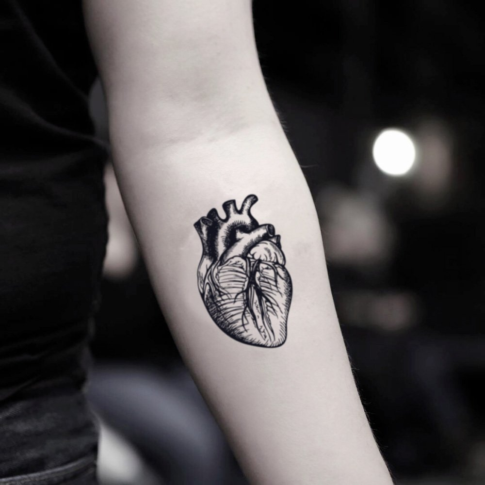Amazoncom Anatomical Heart Temporary Fake Tattoo Sticker