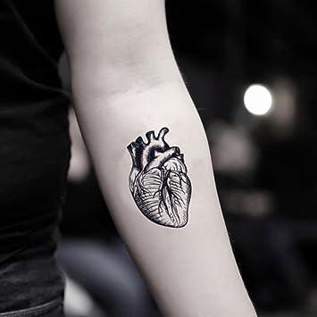 Amazon Com Temporal Tatuaje Falso Anatomico De Corazon Calcomania Juego De 2 Toodtattoo Com Beauty