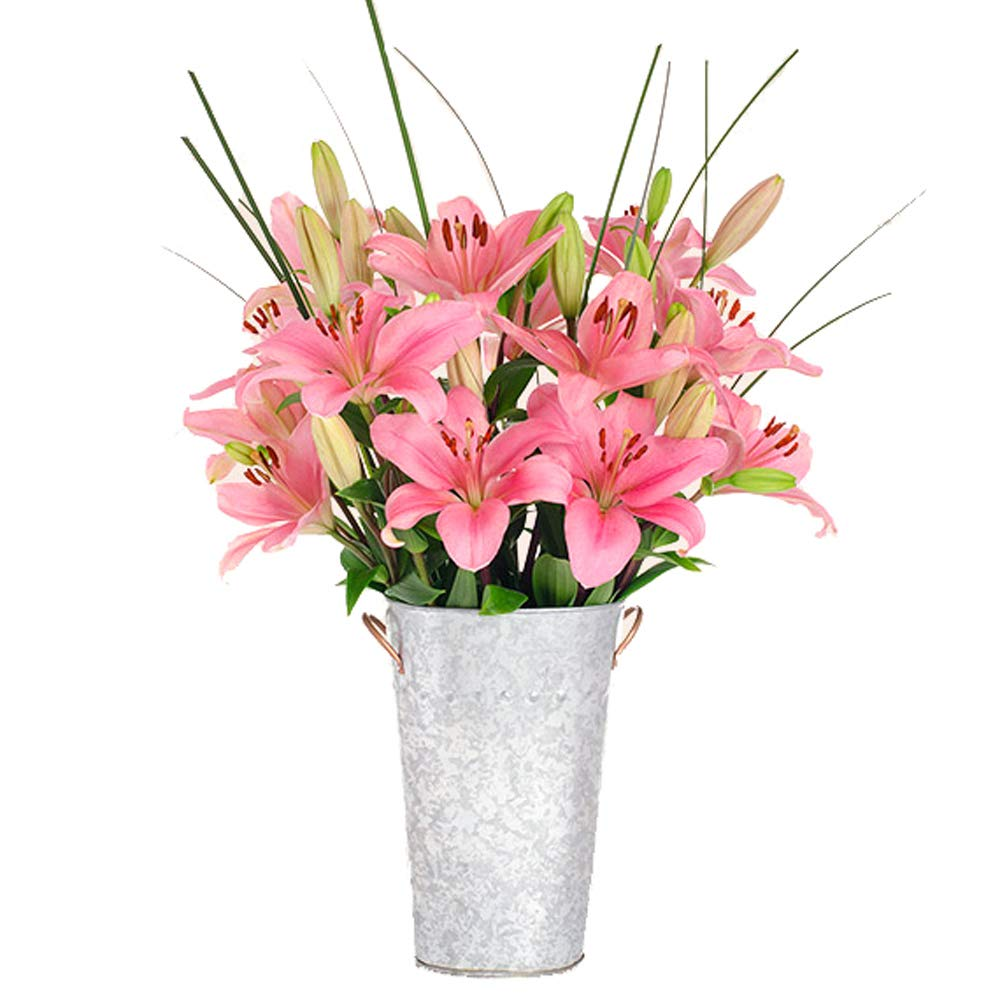 Stargazer Barn - Tickled Pink Bouquet - 12 Stems Of Royal Lilies With Vase - Farm Direct