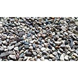 5 lbs. of Small River Pebbles (Washed) from Northern Michigan Succulents, Cactus or Bonsai, Fairy Gardens, Terrariums | SAFE & Non-Toxic