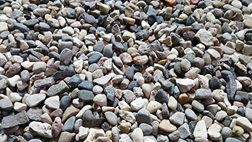 A combination of gravel stones and river pebbles of different sizes and tones.