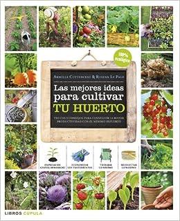 Las mejores ideas para cultivar tu huerto: Trucos y consejos para ...