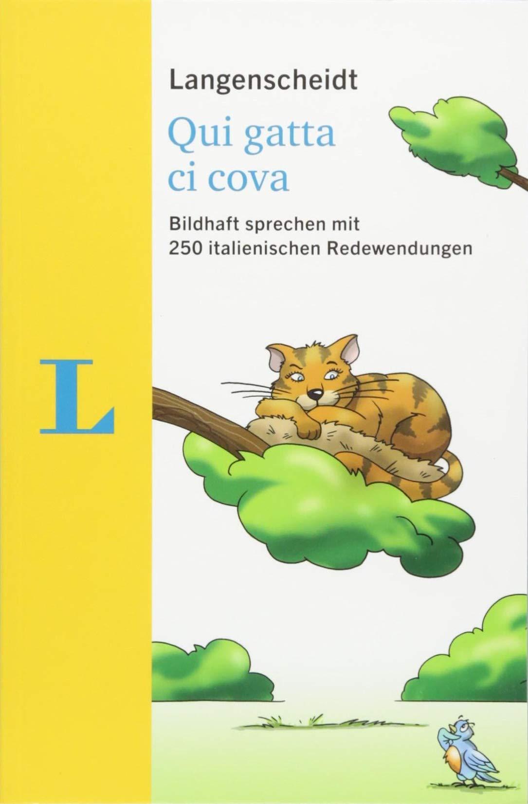 Langenscheidt Qui Gatta Ci Cova   Mit Redewendungen Und Quiz Spielerisch Lernen  Bildhaft Sprechen Mit 250 Italienischen Redewendungen  Langenscheidt Redewendungen