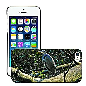 Hot Style Cell Phone PC Hard Case Cover // M00134465 Blue Heron Waterbird Animal Pond // Apple iPhone 5 5S 5G