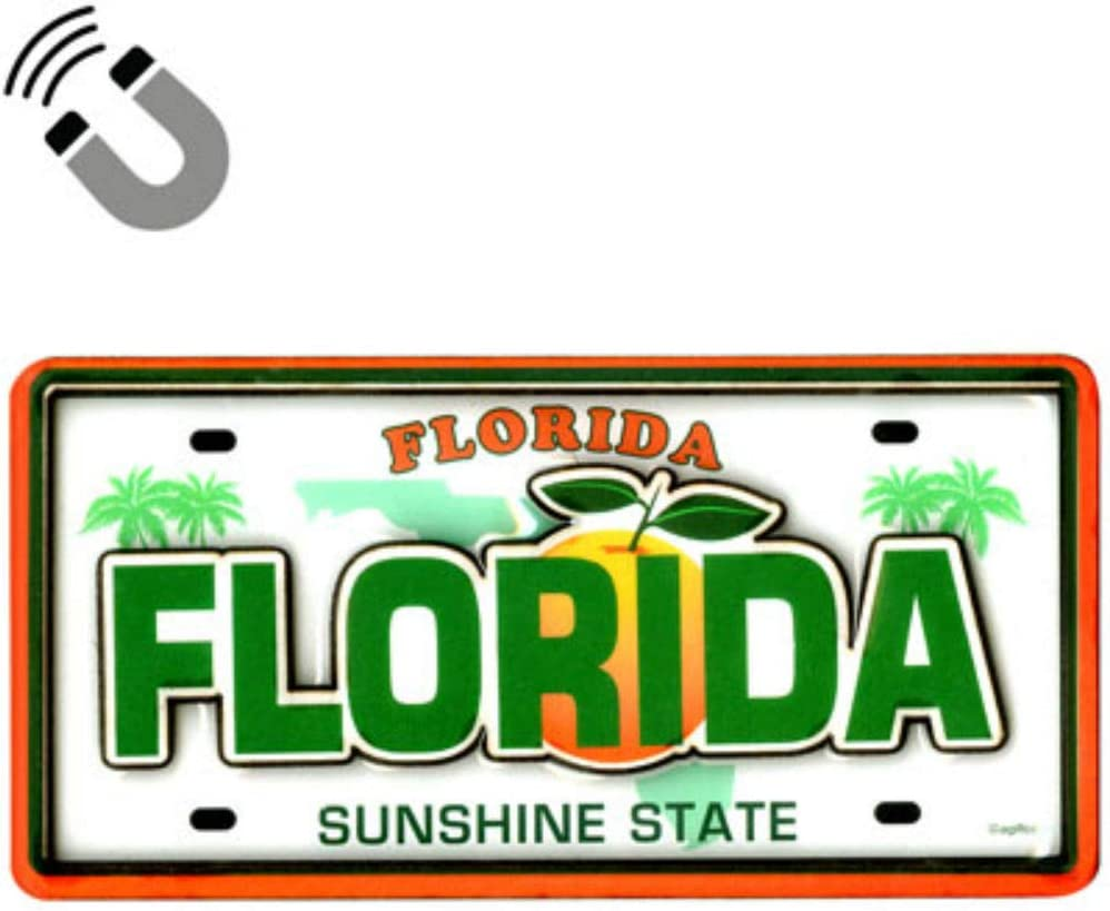"""Florida License Plate Dual Layer MDF Magnet 2"""" x 4.5"""""""