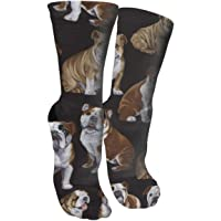 English Bulldogs Compression Socks Unisex Printed Socks Crazy Patterned Fun Long Cotton Socks Over The Calf Tube