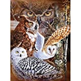 Signature Collection 11 Owls Super Soft Plush Queen Size Blanket By Gardner