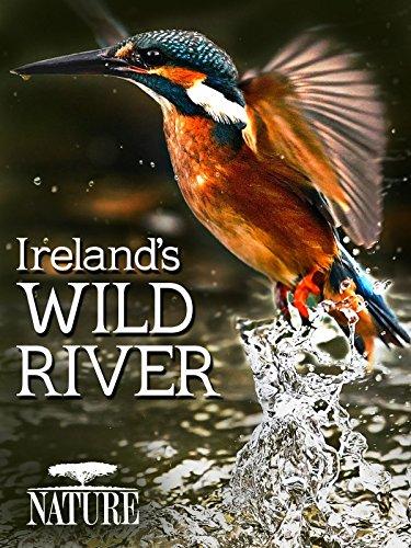 West Coast Rivers - Ireland's Wild River
