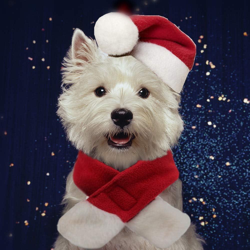 Amazon.com: PULEIDI - Disfraz de Papá Noel con gorro y ...