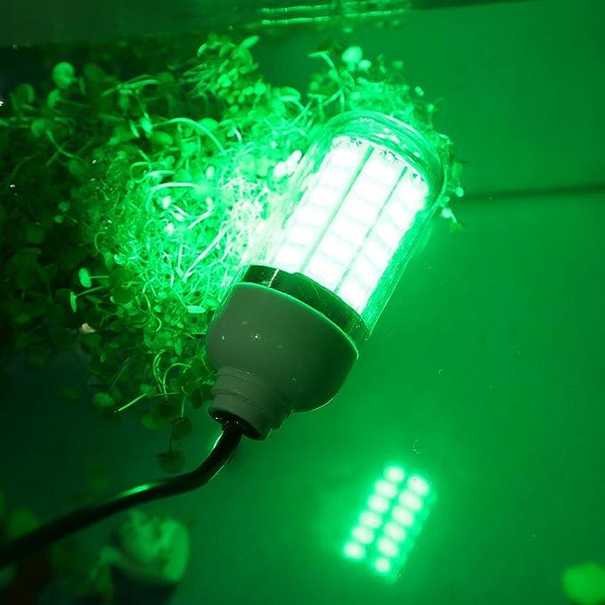 12V LED Unterwasser Tauch Angeln Licht Nacht Fischköder Set mit Batterieclip EM